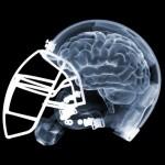Helmet-Brain-v4-1-150x150