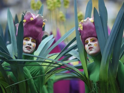 What's with the people dressed as trees and flowers? Brazil is home to the Amazon Rainforest. So there you have it.