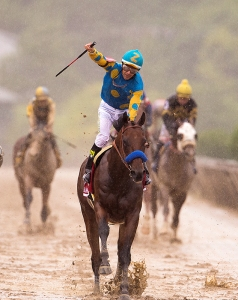 2015.American Pharoah-Head On