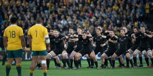All Blacks perform the haka, during the Rugby Championship 1st Bledisloe test match against Australia at Sydney | Brett Phibbs
